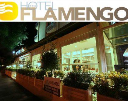Hotel Flamengo